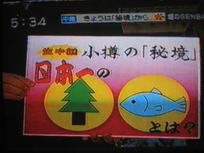 Hana%E3%83%86%E3%83%AC%E3%83%93A.jpg